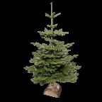 Sapin de Noël NOBILIS avec support en bois