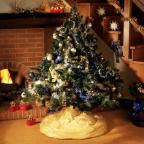 Sac à sapin de Noël biodégradable HANDICAP INTERNATIONAL - Avec Sapin