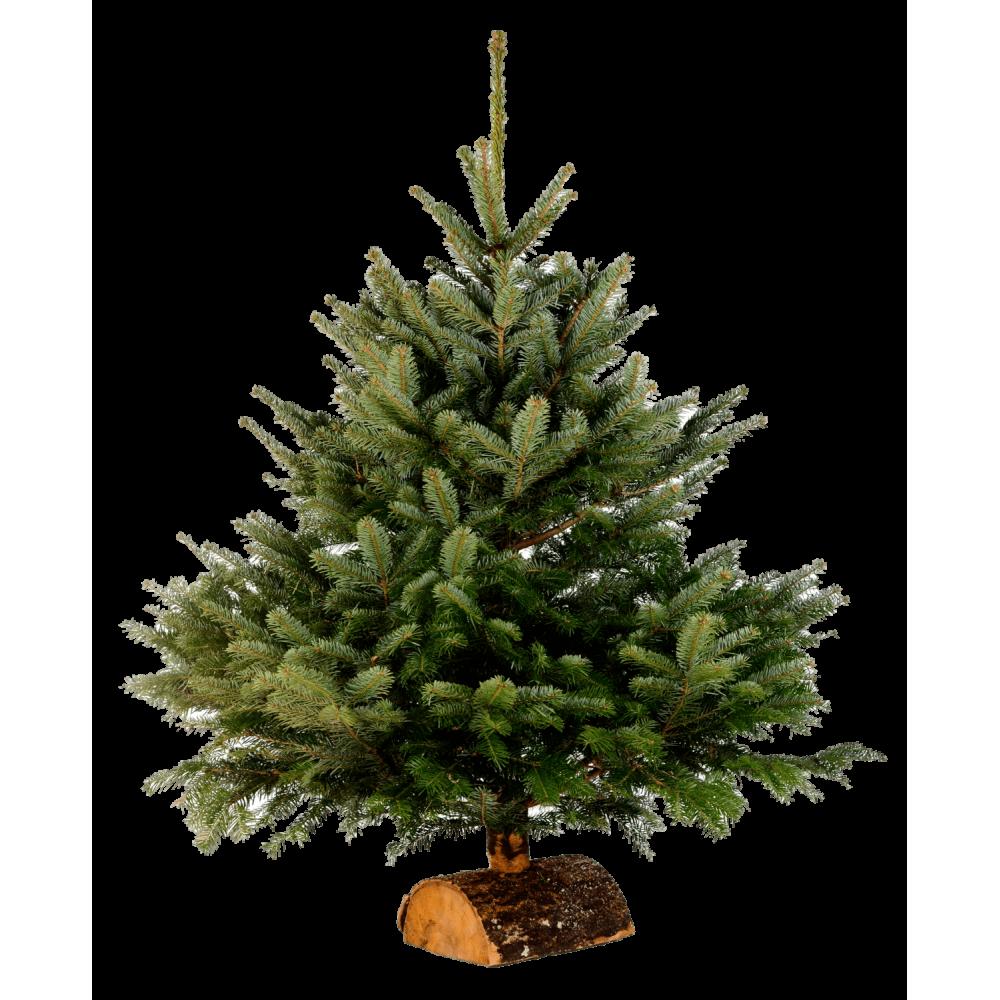 Fabriquer Des Sapins De Noel pied de sapin de noël en bois - bûche en bois   sapins-noel.fr