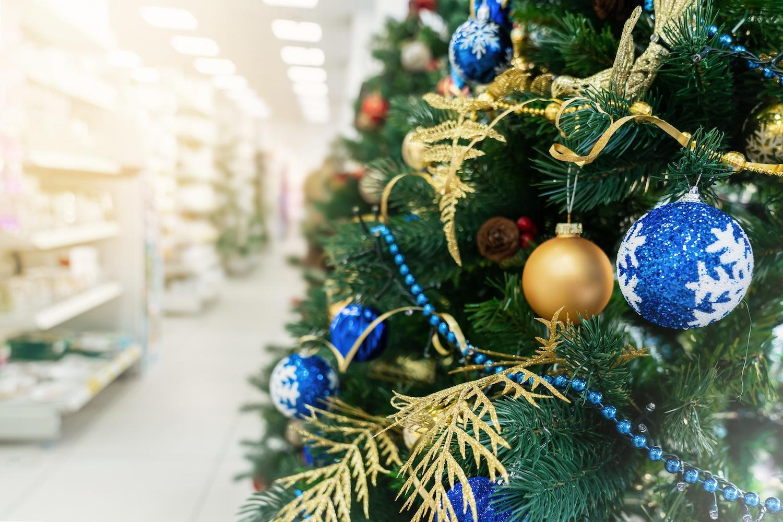 Vente de sapins de Noël pour magasins